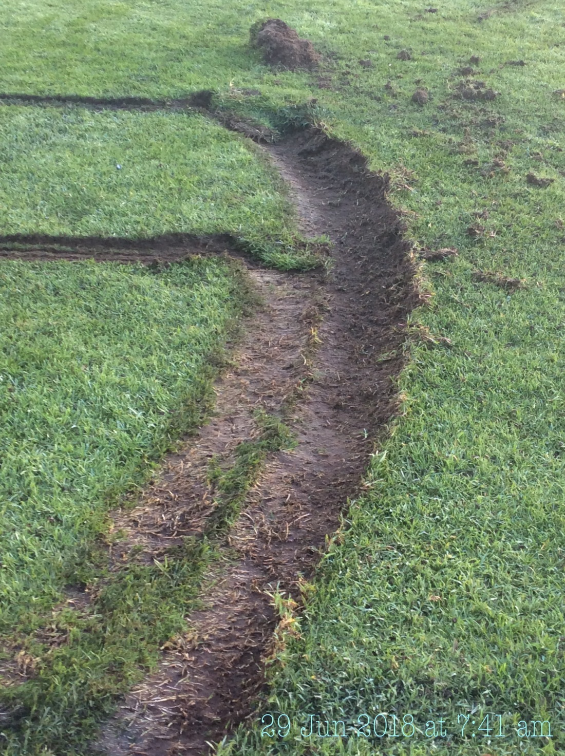 Damage to footy oval